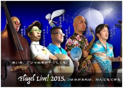 flugel_live_2015